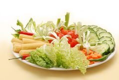 Vegetable plate. Fresh vegetables nicely arranged on white plate Royalty Free Stock Photo