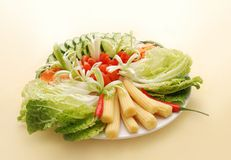 Vegetable plate Royalty Free Stock Photo