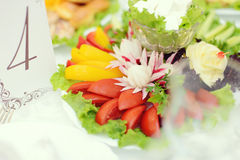 Vegetable Plate Royalty Free Stock Images