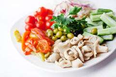 Vegetable plate Royalty Free Stock Photography