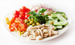 Vegetable plate with mushrooms Stock Photos