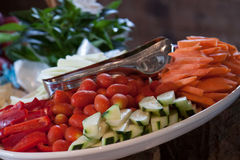 Vegetable platter. Catering tray platter of mixed vegetables appetizers Stock Image