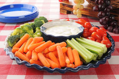 Vegetable platter with ranch dressing Royalty Free Stock Photo