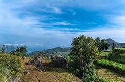 Vegetable plots on highlands in Nilgiri Hills, India. Stock Photo