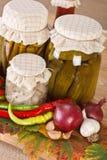 Vegetable preserves Royalty Free Stock Photo