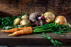 Vegetable products in a cellar Stock Photos
