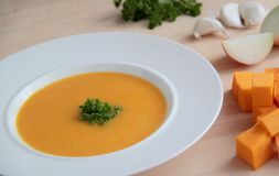 Vegetable pumpkin soup. Creamy pumpkin soup with parsley, garlic and onion Royalty Free Stock Photos