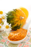 Vegetable puree Royalty Free Stock Photography