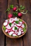Vegetable radish salad Royalty Free Stock Photography