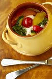 Vegetable ragout with sour cream sauce Royalty Free Stock Photo