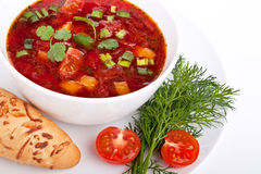 Vegetable red-beet soup Stock Photos