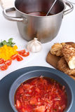 Vegetable red-beet soup Stock Images