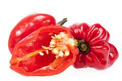 Vegetable of red chili pepper habanero isolated on white background Stock Photos