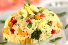 Vegetable Risotto Royalty Free Stock Images
