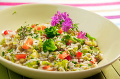 Vegetable Risotto Royalty Free Stock Image