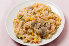 Vegetable risotto high angle Royalty Free Stock Photo