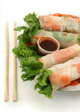 Vegetable rolls Royalty Free Stock Photo