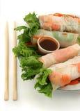 Vegetable rolls Royalty Free Stock Photo
