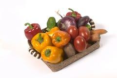 Vegetable`s basket Stock Image