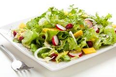 Vegetable sad Stock Image