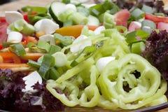 Vegetable salad. Diet lunch - plate of vegetable salad Stock Image