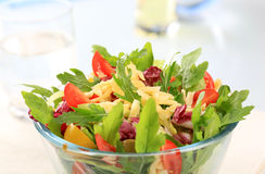 Vegetable salad Royalty Free Stock Photo