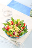 Vegetable salad. Fresh vegetable salad sprinkled with grated cheese royalty free stock images