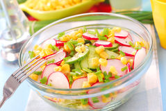 Vegetable salad Stock Image