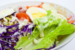 Vegetable Salad. Mix vegetable Salad close up Royalty Free Stock Photo
