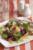 Vegetable salad Stock Image