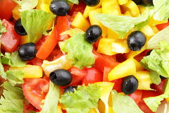 Vegetable salad. With tomato and pepper Stock Images