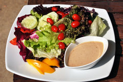 Free Vegetable Salad. Royalty Free Stock Photos - 28800438