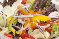 Vegetable salad. Close-up of fresh vegetable salad Royalty Free Stock Image