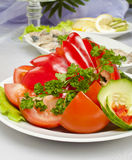 Vegetable salad. With tomato pepper and cucumber Royalty Free Stock Photography