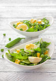Vegetable salad with arugula, cucumber and eggs Stock Photo
