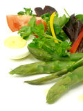 Vegetable salad,asparagus and boiled egg 2. Salad of vegetables and asparagus with boiled egg stock photography