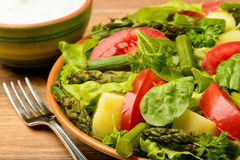 Vegetable salad with asparagus, young potatoes, lettuce, tomatoes and spinach, served with garlic sauce. Stock Photography