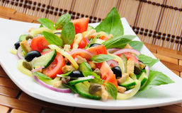 Vegetable salad with basil Royalty Free Stock Images
