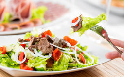 Vegetable salad with beef royalty free stock images