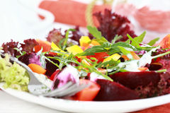 Vegetable salad with beetroot Royalty Free Stock Photography