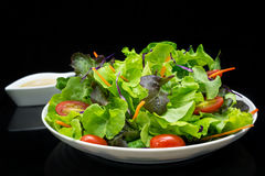 Vegetable salad with black background. Chopping vegetable on white dish and black background Stock Photography