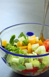Vegetable salad in bowl: cucumber, tomato and celery Stock Photos