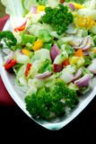 Vegetable salad. In a bowl with full of nutrients Royalty Free Stock Images