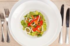 Vegetable salad with calamari. Closeup Stock Image