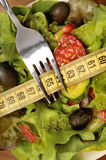 Vegetable salad with centimeter Royalty Free Stock Photos