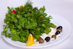 Vegetable salad with cheese Stock Images