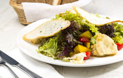 Vegetable salad and cheese. Salad vegetables and goat cheese Plate, Refreshment Royalty Free Stock Photos
