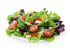 Vegetable salad with cheese and black olives. Salad from fresh vegetables, cheese mozzarella and olives, watered with olive oil Stock Photos