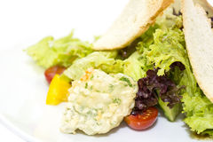 Vegetable salad and cheese. Salad vegetables and goat cheese on a white background Royalty Free Stock Images