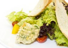 Vegetable salad and cheese. Salad vegetables and goat cheese on a white background Stock Image